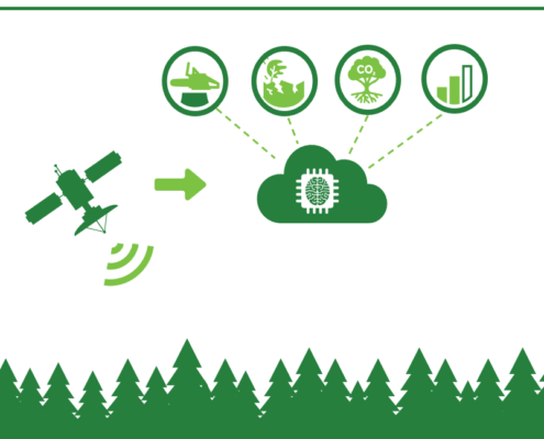 Satelliittimonitoroinnilla metsävaratietoa
